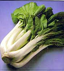 Chinese Pac Choi Seeds