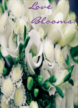 Love Blooms Seed Packet (BOGO)