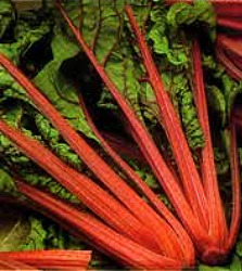 Swiss Chard - Ruby Red Seeds