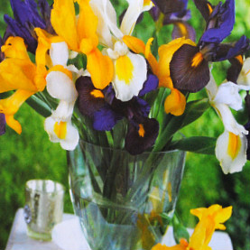 Value Bag - Dutch Iris