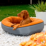 Bowsers Dog Beds