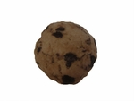 COOKIE-Dog Toy