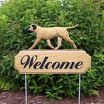 Bullmastiff DIG Welcome Stake -Fawn