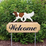 Cavalier King Charles Spaniel DIG Welcome Stake-Blenheim