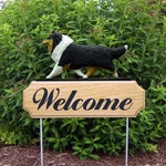 Collie DIG Welcome Stake-Tri