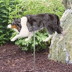 Border Collie Garden Stake-Blue Merle