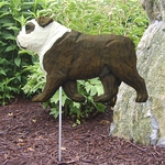 English Bulldog Garden Stake-Brindle-White