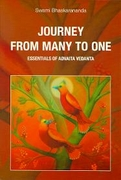 Journey From Many To One