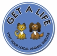 """Get A Life Visit Your Local Animal Shelter"" Car Magnet"