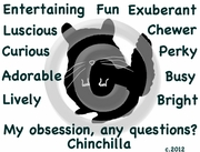 Chinchilla Obsession T-Shirt