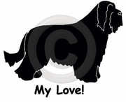 Bearded Collie My Joy! My Love! My Life! Sweatshirt