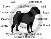 Chinese Shar-Pei Obsession Sweatshirt