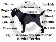 Border Terrier Obsession T-Shirt