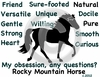 Rocky Mountain Horse Obsession T-Shirt