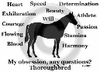 Thoroughbred Obsession T-Shirt