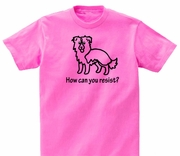 Border Collie How Can You Resist? T-Shirt