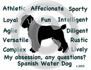 Spanish Water Dog Obsession T-Shirt