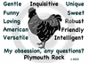 Plymouth Barred Rock Obsession T-Shirt