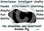 Guinea Pig Obsession Long Sleeve T-Shirt