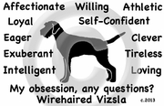 Wirehaired Vizsla  Obsession T-Shirt