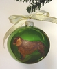 American Water Spaniel Hand Painted Christmas Ornament