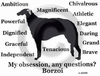 Borzoi Obsession T-Shirt