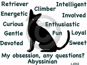 Abyssinian Obsession T-Shirt