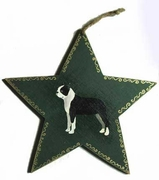 Boston Terrier Hand Painted Star