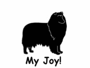 Collie My Joy! My Love! My Life! T-Shirt