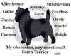 Cairn Terrier Obsession T-Shirt