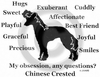 Chinese Crested Obsession T-Shirt