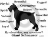 Giant Schnauzer Obsession Long Sleeve T-Shirt