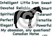Canadian Horse  Obsession T-Shirt