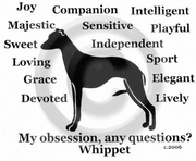 Whippet Obsession Long Sleeve T-Shirt