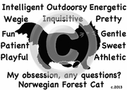 Norwegian Forest Cat Obsession T-Shirt
