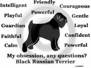 Black Russian Terrier Obsession T-Shirt