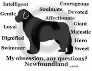 Newfoundland Obsession T-Shirt