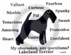 Lakeland Terrier Obsession Long Sleeve T-Shirt