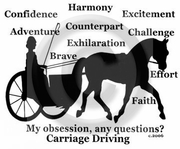 Carriage Driving Horse Obsession T-shirt