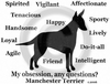 Manchester Terrier Obsession T-Shirt