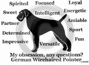 German Wirehaired Pointer Obsession T-Shirt