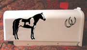 Paint Horse Mail Box