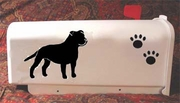 Staffordshire Bull Terrier Mail Box