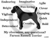 Parson Russell Terrier Obsession T-Shirt