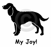 American Water Spaniel My Joy! My Love! My Life! T-Shirt