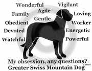 Greater Swiss Mountain Dog Obsession Long Sleeve T-Shirt