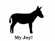 Donkey My Joy! My Love! My Life! T-Shirt