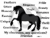Friesian Obsession T-Shirt