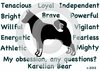 Karelian Bear  Obsession T-Shirt