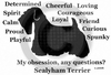 Sealyham Terrier Obsession Long Sleeve T-Shirt